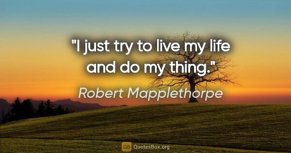 "Robert Mapplethorpe quote: ""I just try to live my life and do my thing."""