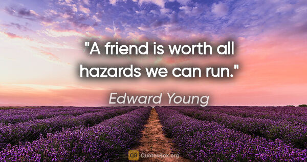 "Edward Young quote: ""A friend is worth all hazards we can run."""
