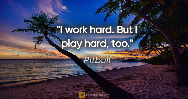 "Pitbull quote: ""I work hard. But I play hard, too."""