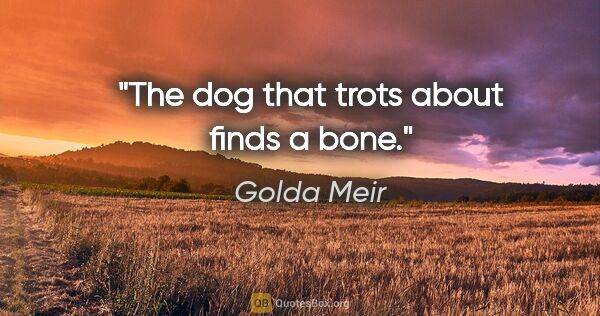 "Golda Meir quote: ""The dog that trots about finds a bone."""