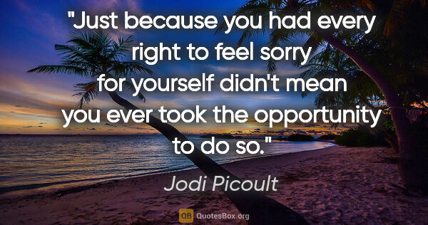 "Jodi Picoult quote: ""Just because you had every right to feel sorry for yourself..."""