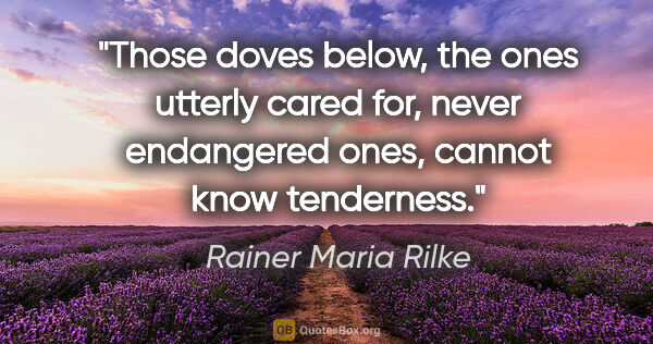 "Rainer Maria Rilke quote: ""Those doves below, the ones utterly cared for, never..."""
