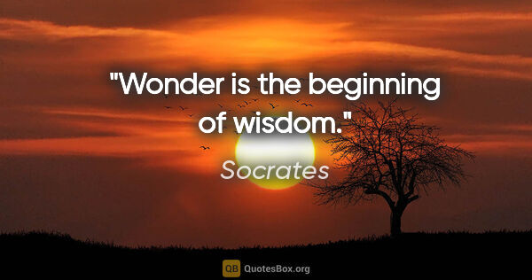 "Socrates quote: ""Wonder is the beginning of wisdom."""