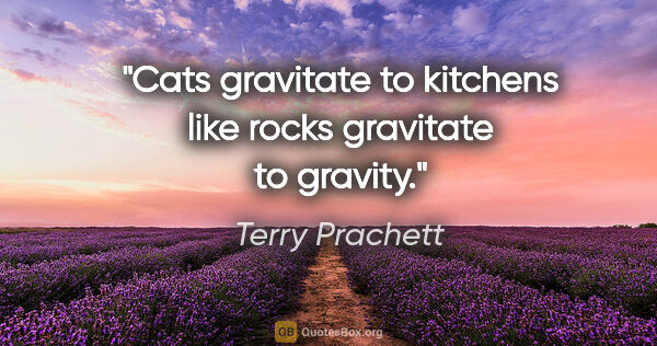 "Terry Prachett quote: ""Cats gravitate to kitchens like rocks gravitate to gravity."""