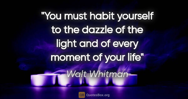 "Walt Whitman quote: ""You must habit yourself to the dazzle of the light and of..."""