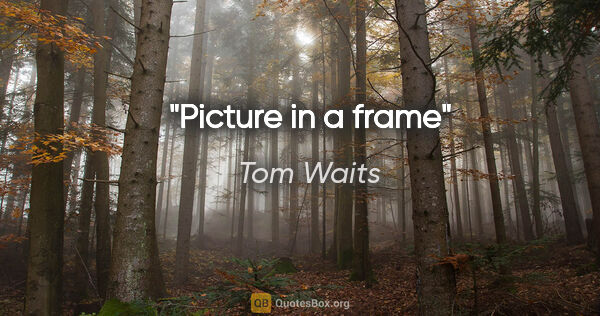 "Tom Waits quote: ""Picture in a frame"""