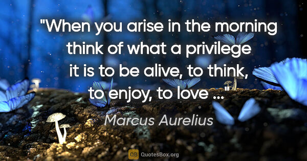 "Marcus Aurelius quote: ""When you arise in the morning think of what a privilege it is..."""