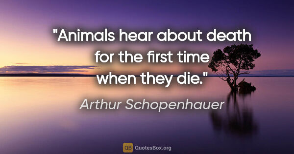 "Arthur Schopenhauer quote: ""Animals hear about death for the first time when they die."""