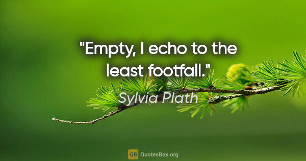 "Sylvia Plath quote: ""Empty, I echo to the least footfall."""