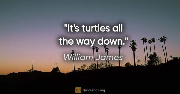 "William James quote: ""It's turtles all the way down."""