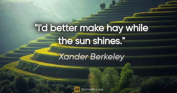 "Xander Berkeley quote: ""I'd better make hay while the sun shines."""