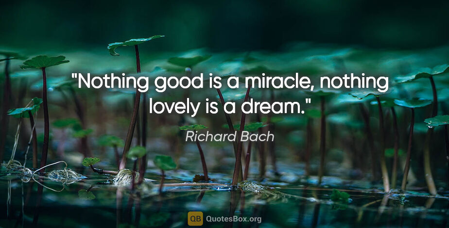 "Richard Bach quote: ""Nothing good is a miracle, nothing lovely is a dream."""