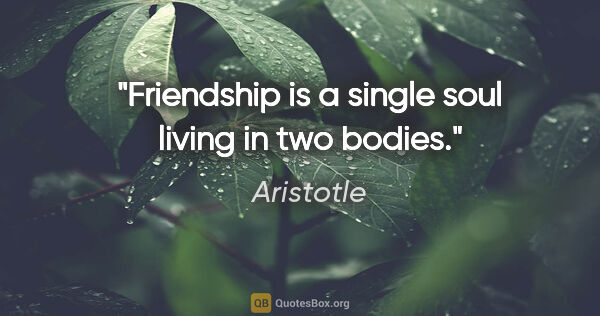 "Aristotle quote: ""Friendship is a single soul living in two bodies."""