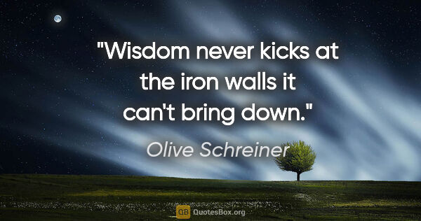 "Olive Schreiner quote: ""Wisdom never kicks at the iron walls it can't bring down."""