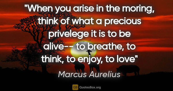 "Marcus Aurelius quote: ""When you arise in the moring, think of what a precious..."""