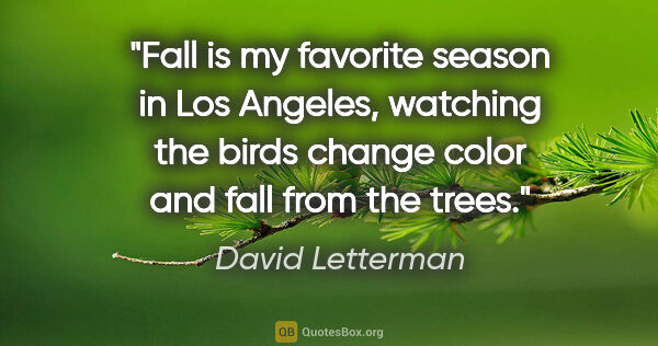 "David Letterman quote: ""Fall is my favorite season in Los Angeles, watching the birds..."""